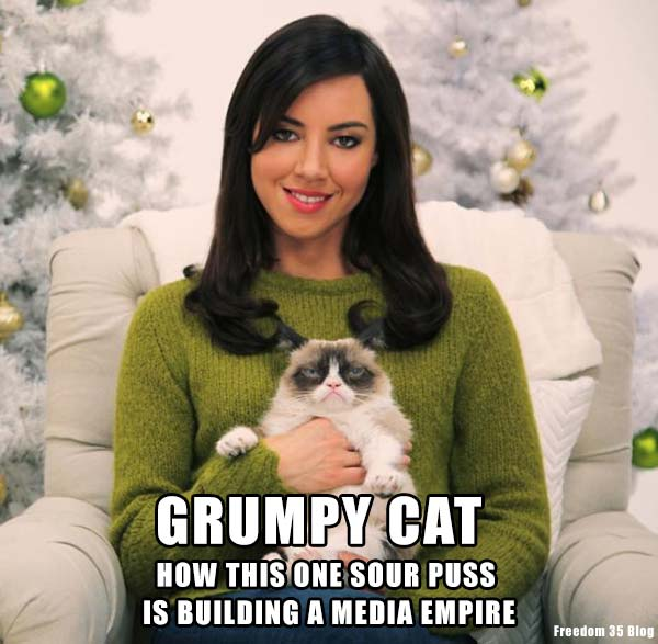 Grumpy Cat - How Much Money Does She Make. Breed.